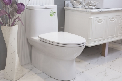 马桶和蹲坑的区别是什么?卫生间马桶和蹲坑的区别介绍