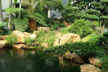 庭院魚池擺放風水,魚池水景的風水講究
