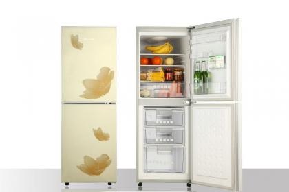 冰箱功能介绍,巧用冰箱也能省下不少钱