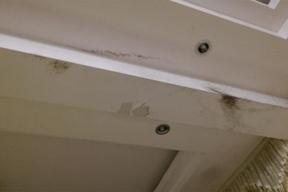 天花板发霉了怎么办?天花板发霉解决方法
