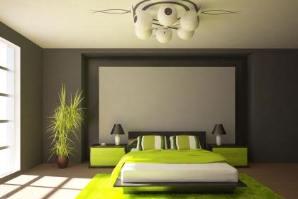 哪些植物可以放在卧室?卧室摆放植物禁忌