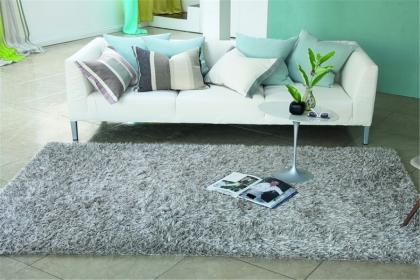 如何清潔居室地毯,打造健康舒適的家居環境
