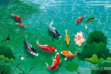 九鱼图鱼头朝下好吗,九鱼图有哪些风水知识