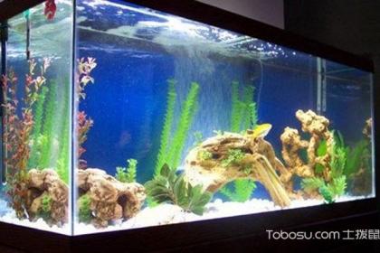鱼缸摆放风水禁忌,家庭摆放鱼缸注意了!