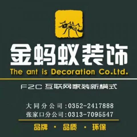 金蚂蚁装饰