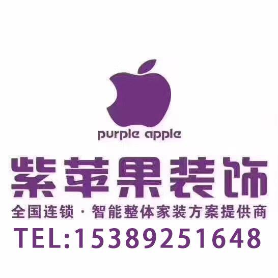 紫苹果装饰