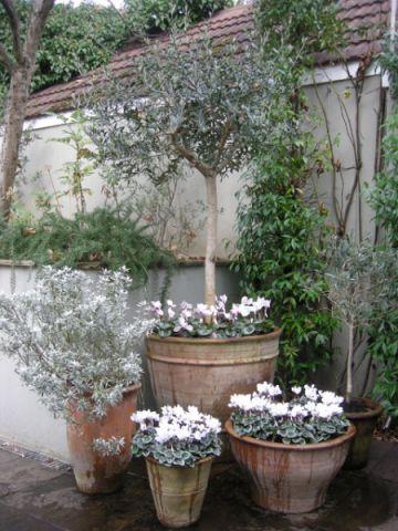 花园背景墙简欧风格装修设计图片