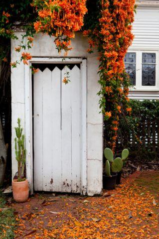 花园白色外墙混搭风格装潢设计图片