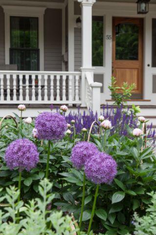 花园细节简欧风格装修效果图