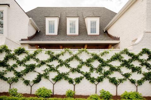花园外墙美式风格装潢图片