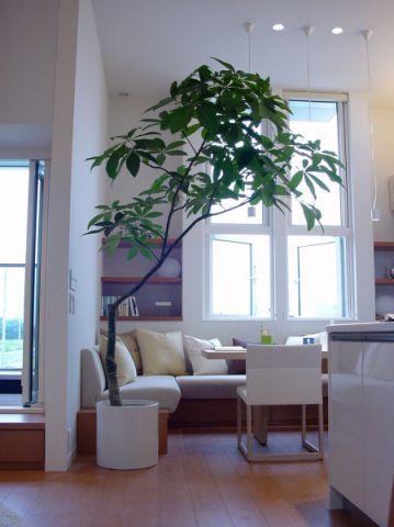 客厅细节日式风格装修图片