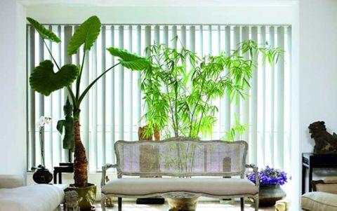 自然客厅沙发装饰实景图