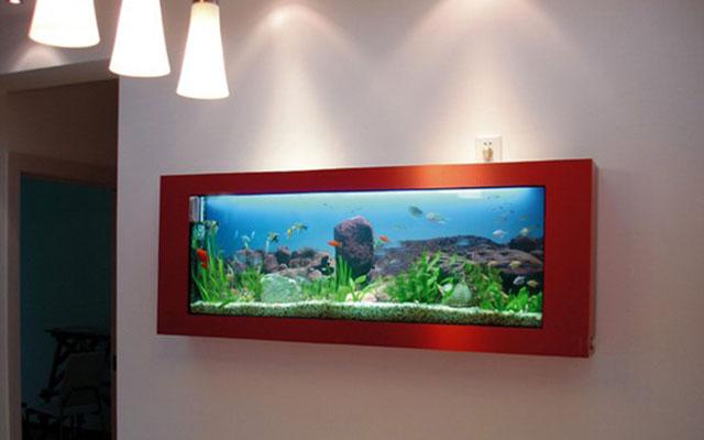 壁挂式鱼缸尺寸