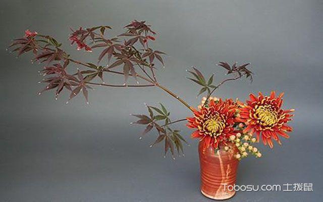 日式风格植物装饰