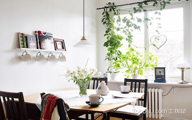 餐厅绿植布置