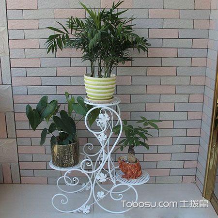 简单铁艺花架