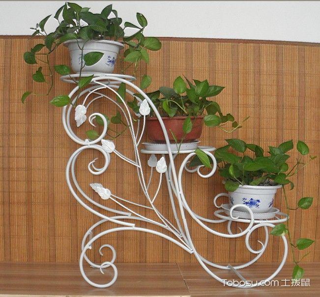阶梯状铁艺花架