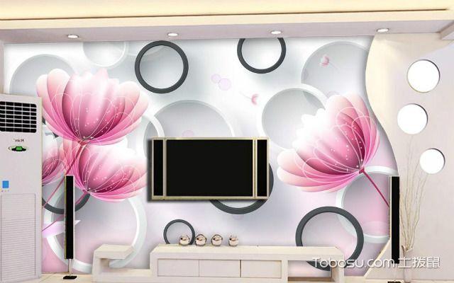 石膏线电视背景墙的分类之秸秆