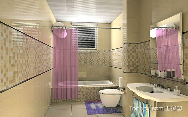 最新小户型卫生间浴帘效果图 朦胧