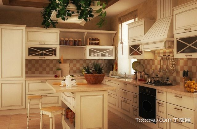 最新田园风格开放式厨房装修图片之绿植