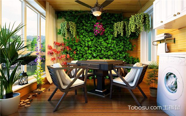 阳台种什么植物好