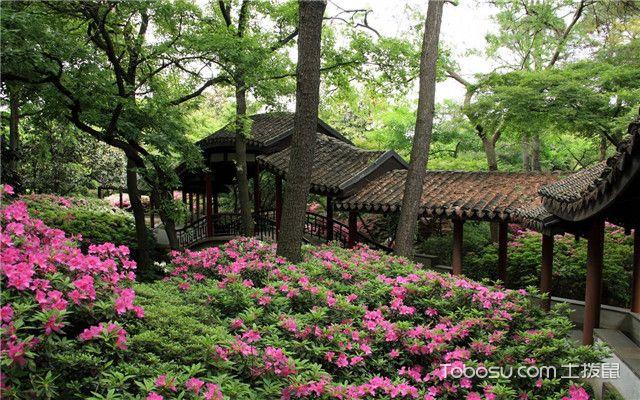 阳台春季养花要注意什么