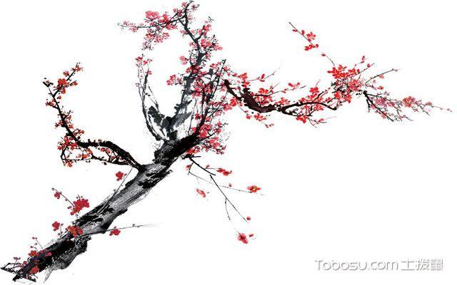 阳台春季养花