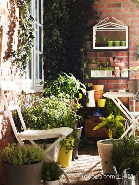 小户型阳台花园设计