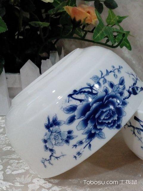 骨瓷碗和陶瓷碗要点