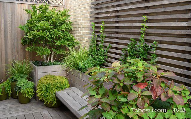 4,阳台面积较小,我们可以设计成植物墙,来打造花园的感觉.图片