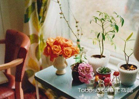 客厅花瓶摆放