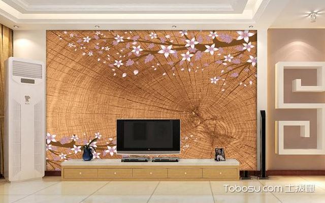房屋电视背景墙 方法
