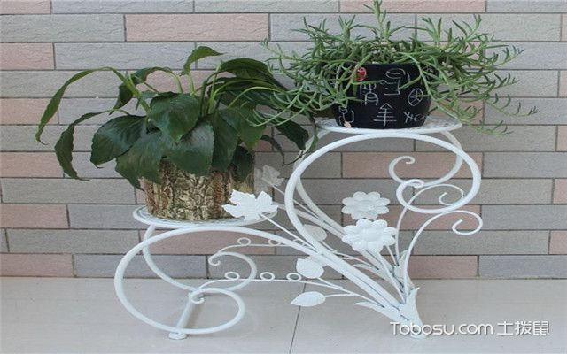 花架怎么保养之铁艺花架