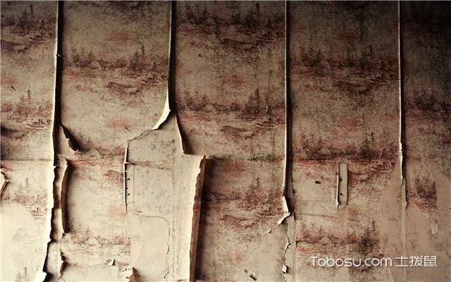 墙面发霉怎么处理修复