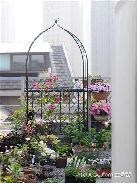 如何把阳台变成花园-利用挂钩