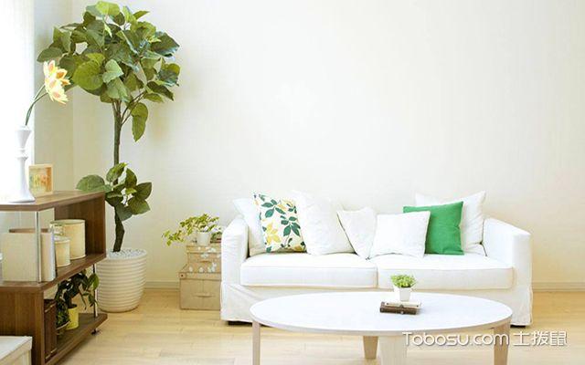 客厅摆放植物禁忌有哪些之不宜摆放假植物