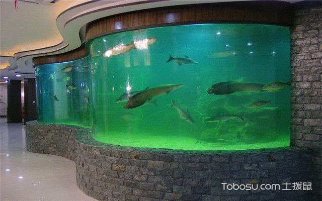 鱼缸摆放风水禁忌之鱼缸最好选择长方形或圆形