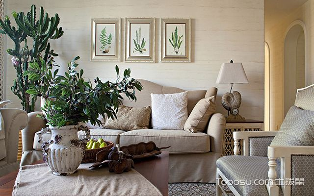客厅植物怎么摆放好—案例2