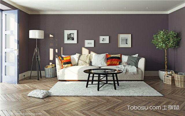长形客厅怎么装修之家具选择