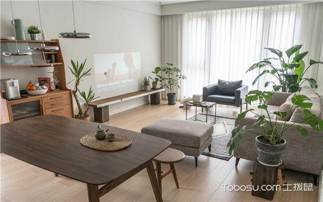 客厅植物摆放风水-客厅植物风水要求