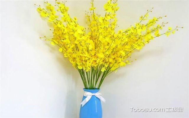 有哪些绿植适合放在室内-迎春花