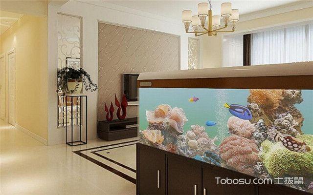 鱼缸摆放在什么位置风水好之一定要及时清洁鱼缸