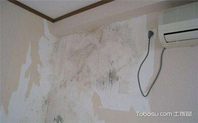墙面为什么会发霉之墙面发霉的外因