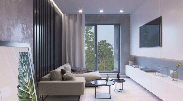 北欧风格49平米一居室新房装修效果图