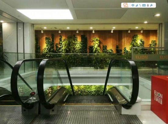 億利辦公區植物墻裝修效果圖