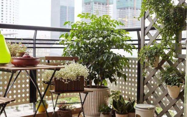 舒适阳台装修设计