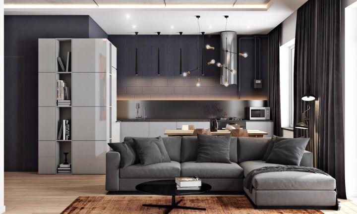 55方黑灰棕简约一居室装修效果图